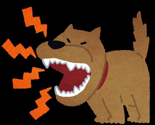 吠える理由 犬が吠える理由と意味とは?無駄吠えをやめさせる方法