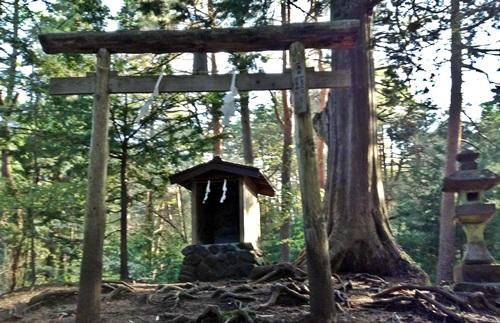 日本武尊を祀っている丘