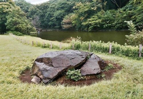 明治神宮 亀石