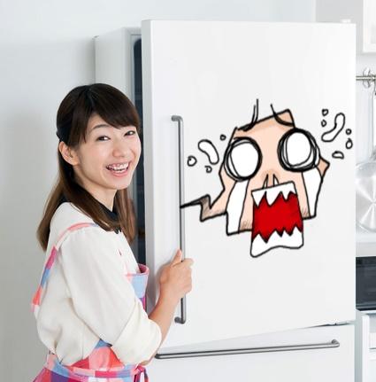 ドッグフードは冷蔵庫に入れちゃダメ