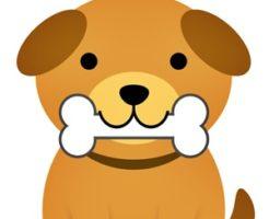 犬 誤飲 誤食 対処法 食べさせてはいけないもの