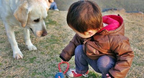散歩に来たら犬と出会った男の子