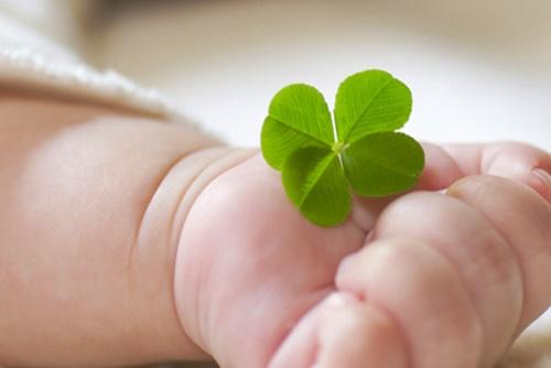 4つ葉のクローバーを持つ赤ちゃんの可愛い手
