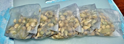5つの柚子の種が入ったペーパーバッグ
