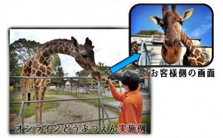 大牟田市動物園を解説つきで楽しめる